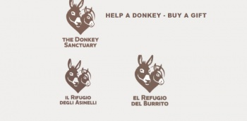 E-commerce solutions for the donkey sanctuaries of Cyprus, Spain, Italy, UK & Ireland