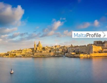The power of a Website Revamp: MaltaProfile.info